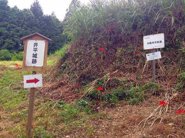 この先井平城2.jpg