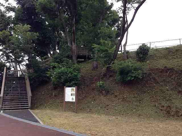それっぽい段丘1.jpg