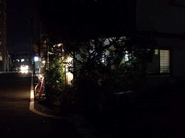アヤしい灯1.jpg