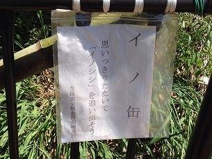 イノ缶2.jpg