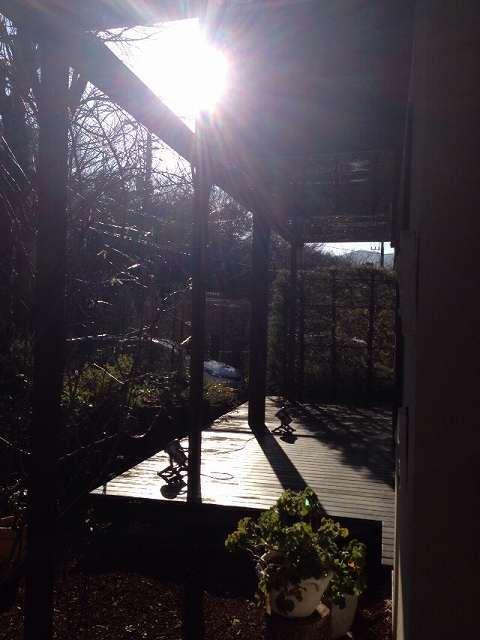 デッキの西陽.jpg