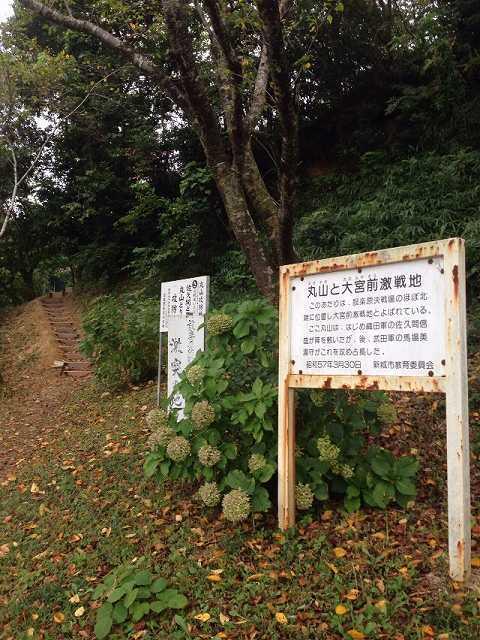丸山1.jpg