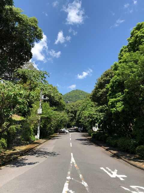 伊雄山1.jpg