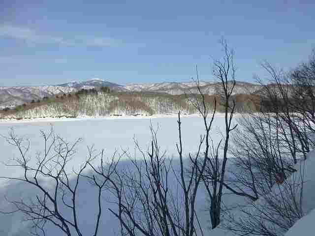 凍結1.jpg