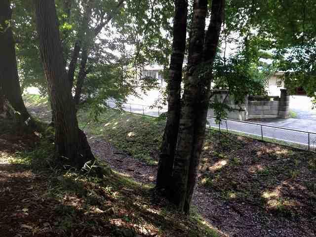 北側の土塁から堀を見下ろす2.jpg