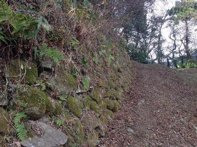 北郭の石垣4.jpg