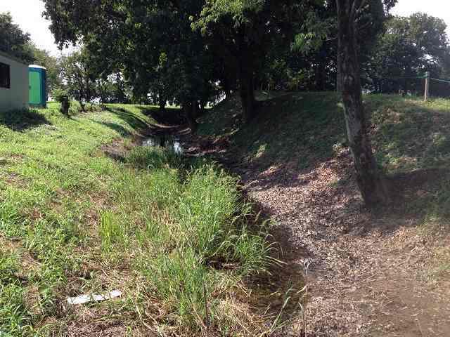 南側の堀2.jpg