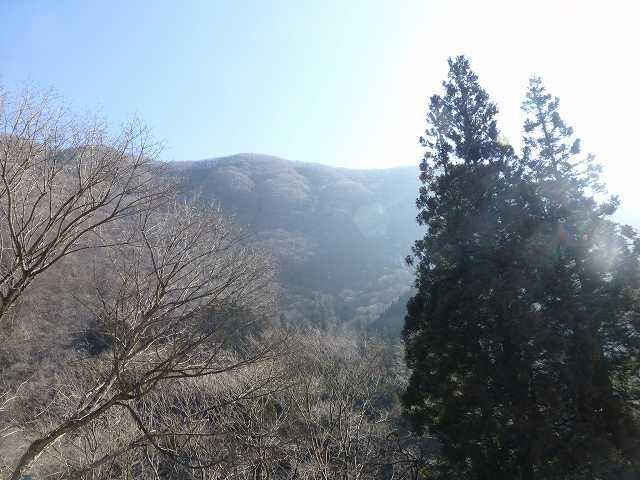 又見山3.jpg