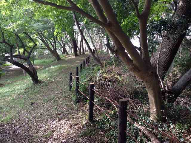 古城本郭の土塁跡1.jpg