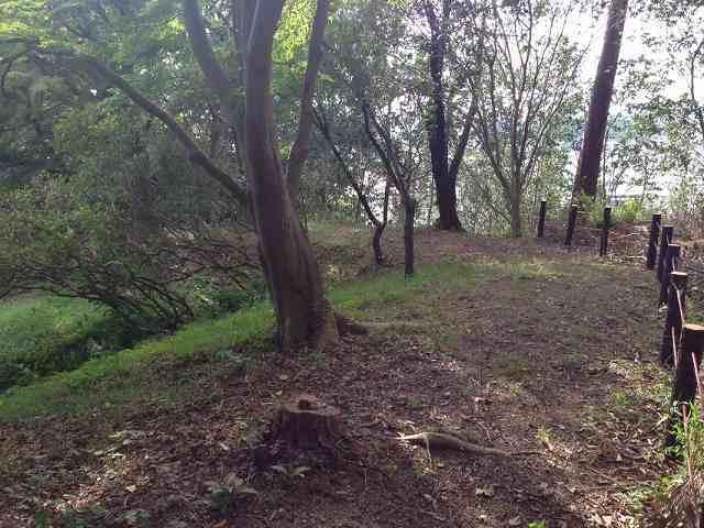 古城本郭の土塁跡2.jpg