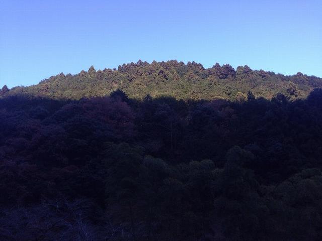 向いの山.jpg