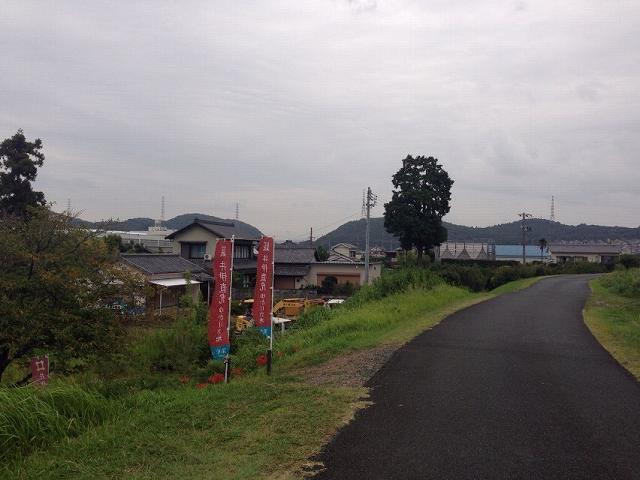 堤防の道.jpg