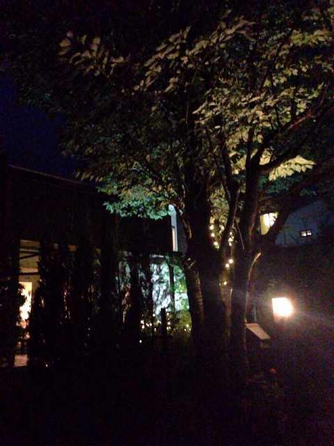 夜6.jpg