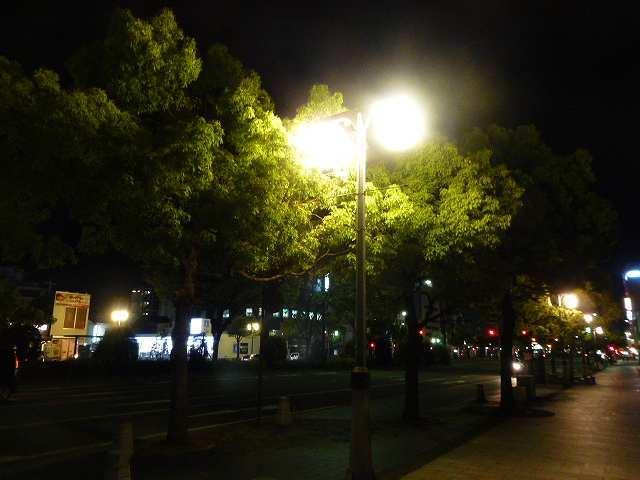 夜の和歌山2.jpg