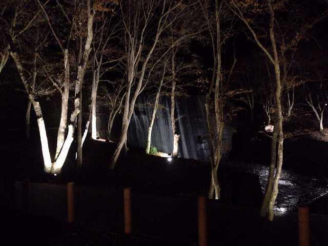 夜の堰堤.jpg
