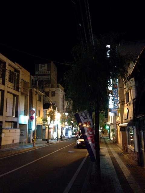 夜の柳通り4.jpg