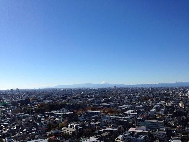 富士が見える.jpg