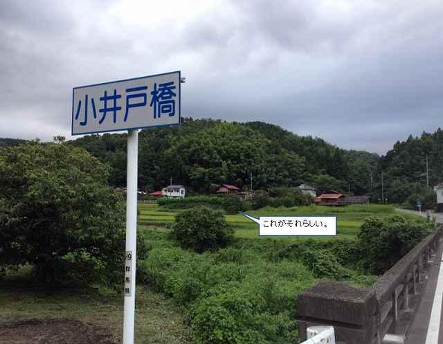 小井戸橋1.jpg