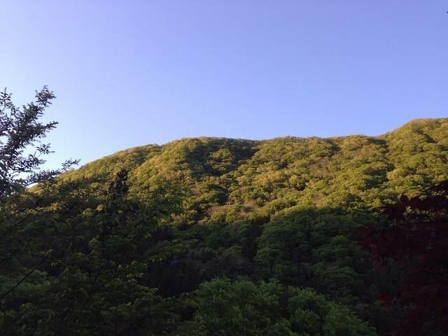 山21.jpg
