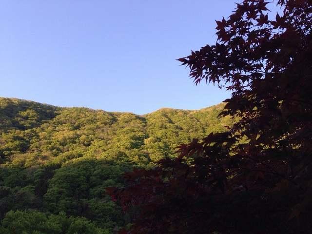 山22.jpg