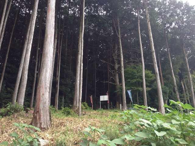 山県塚3.jpg