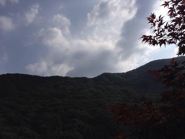 朝の又見山2.jpg