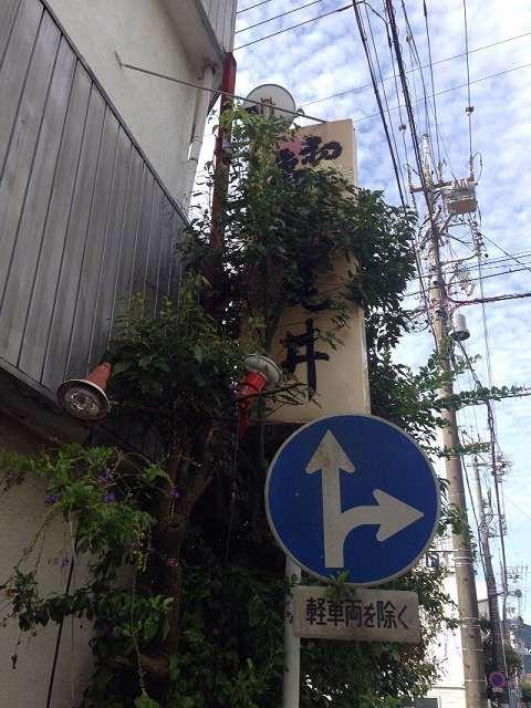 朝の紀尾井4.jpg