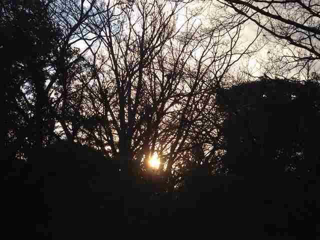 朝日が.jpg