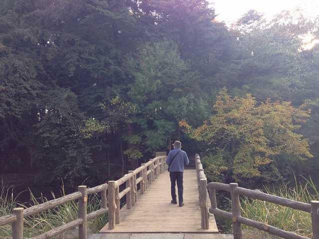 木橋の先には.jpg