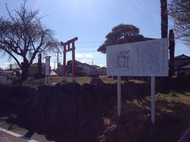 桃井城10.jpg