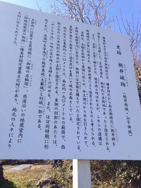 桃井城7.jpg