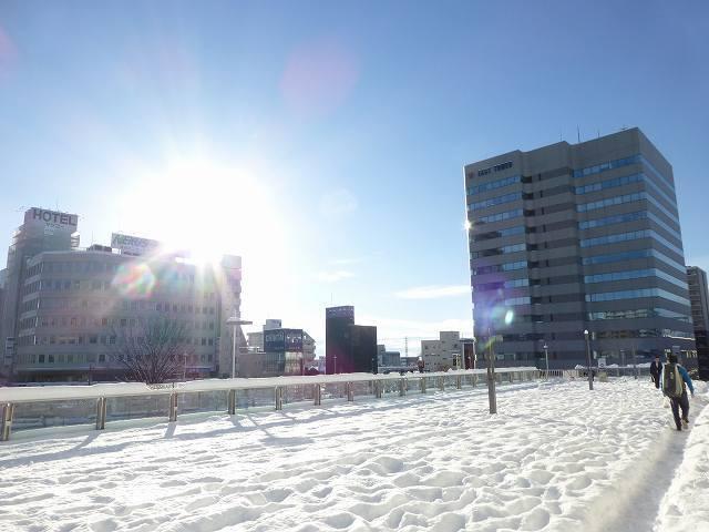 残雪の朝11.jpg