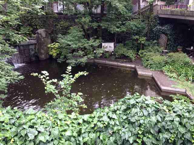 池と滝.jpg