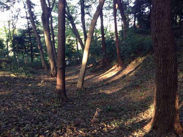 浅い堀1.jpg