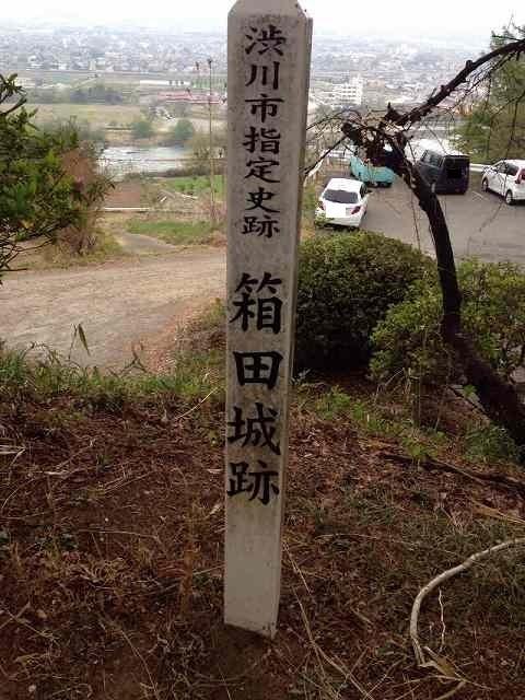 渋川市指定.jpg