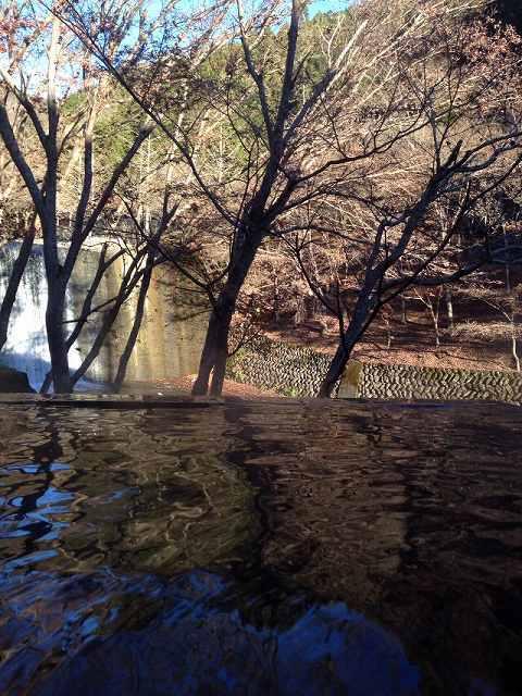 渓流の湯朝1.jpg