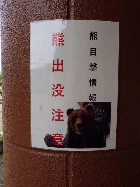 熊!!.jpg