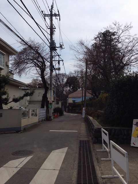 登下校道路の先に.jpg