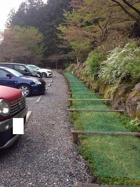 皆さん前向き駐車.jpg