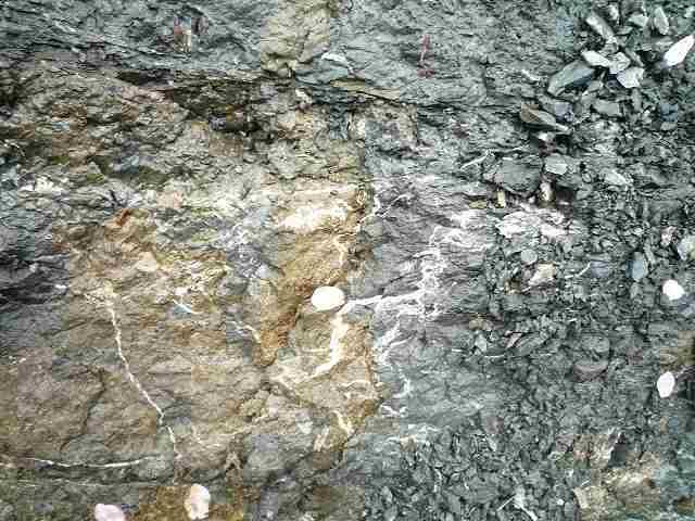 硫化水素のシミ?1.jpg