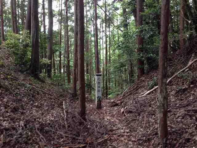 空堀3.jpg