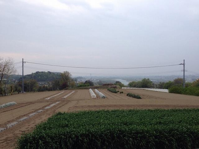 箱田城が見える.jpg