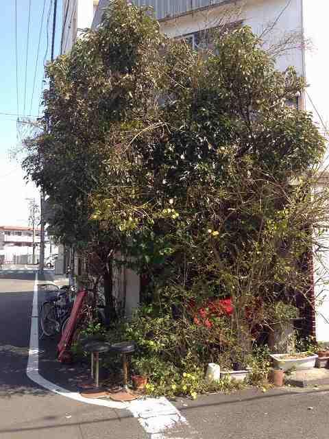 紀尾井3.jpg