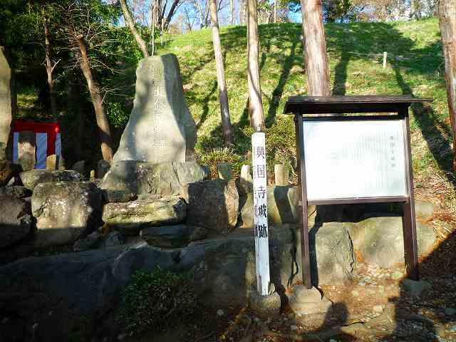 興国寺城1.jpg