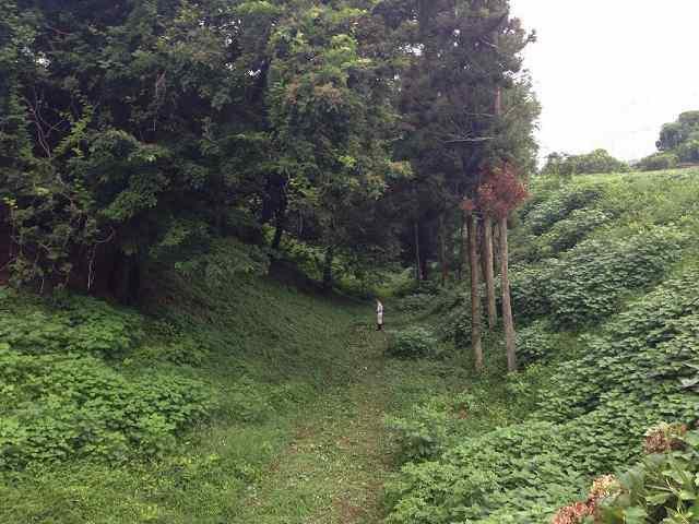 草刈り中2.jpg