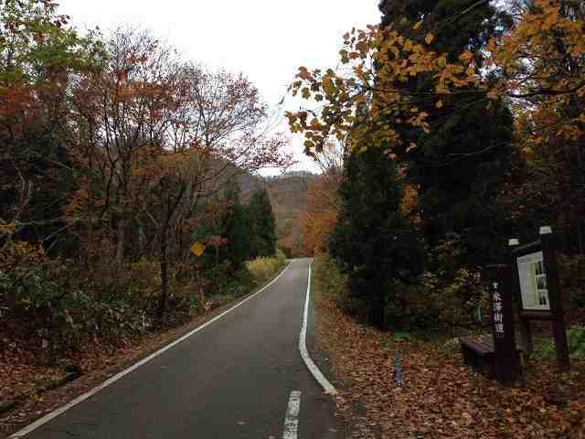 街道から檜原方面を望む.jpg