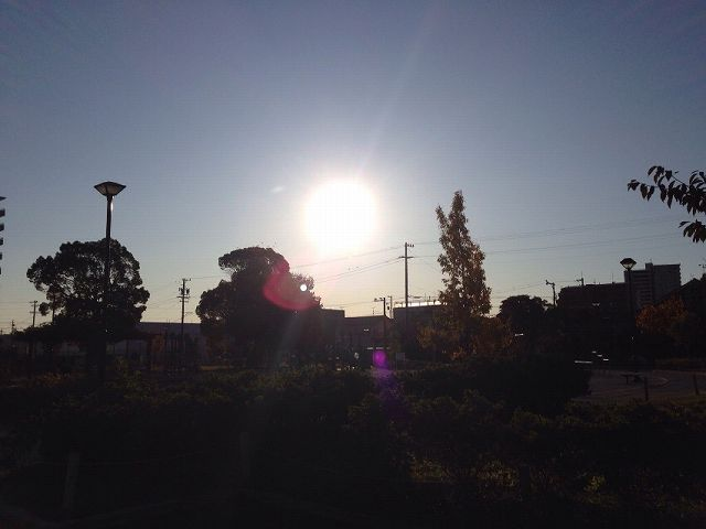 近所の公園1.jpg