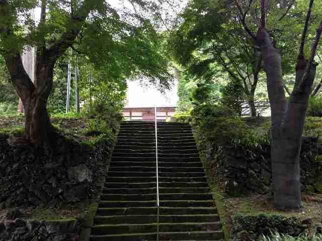 階段を上る.jpg