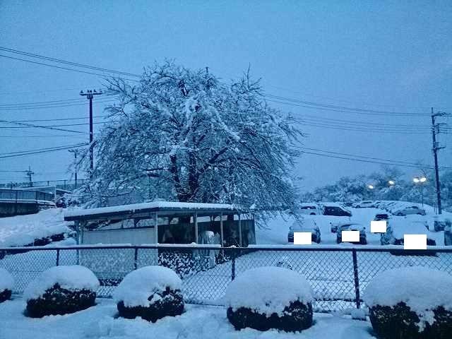雪の上州.jpg