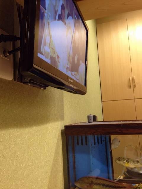 TVのそば.jpg